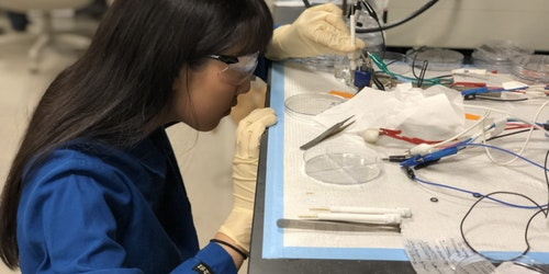 Annie Ma working in a lab with her lab cloth